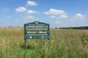 Alistair's Wood