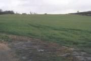 """Fifteen Acres"" - A remnant of Parsonage Farm"