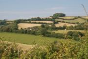 Farmland west of Teignharvey Road