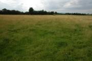 Farmland near Teddington