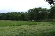 Farmland, Capel Betws Lleucu, Ceredigion