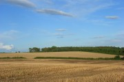 Farmland, Catmore