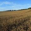 Farmland, Farnborough