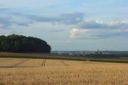 Crown Estate farmland, Windsor