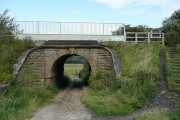 Bridge under the Trans Pennine Trail outside Oxspring