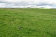 Pasture at Hardgatehead
