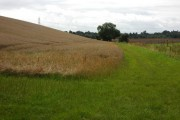 Farmland near Murrell's End