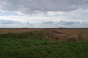 Flat farmland from Church Lane