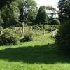Camelford: Lanteglos churchyard