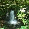 Camelford: stream in churchyard