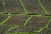 Farmland near New Greenhill