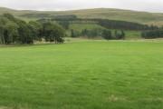 Farmland at Romannobridge
