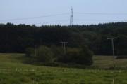 Bixley Wood from Kings Bank Lane