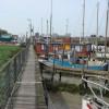 Boardwalk boat moorings, Blackwater Estuary