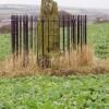 Dogton Class III Pictish Cross Slab