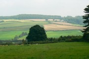 A view east from Sevenleaze Lane, Horsepools, Gloucestershire