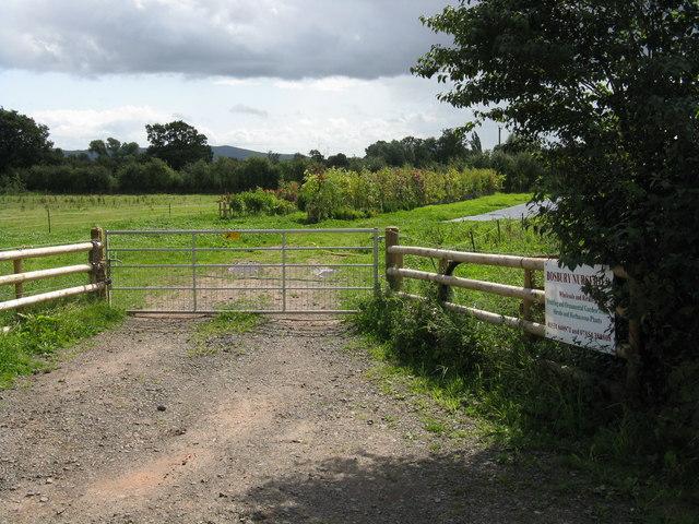 Back gate to Bosbury Nurseries
