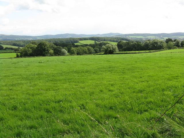 View toward Fox Hill