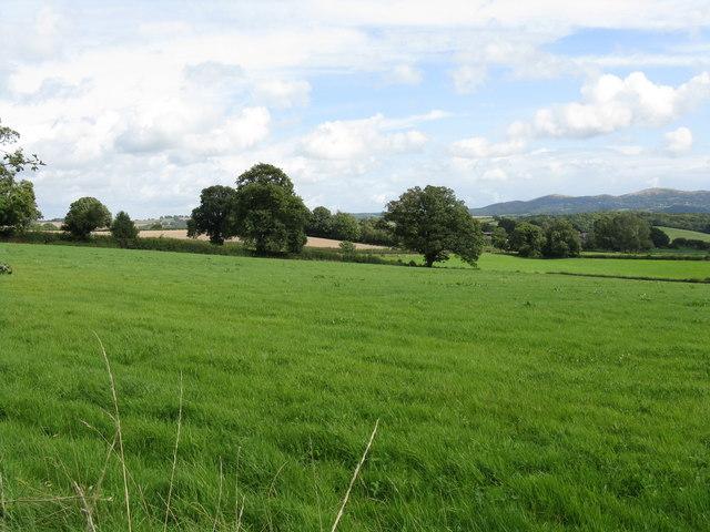 View toward Woodcroft Farms