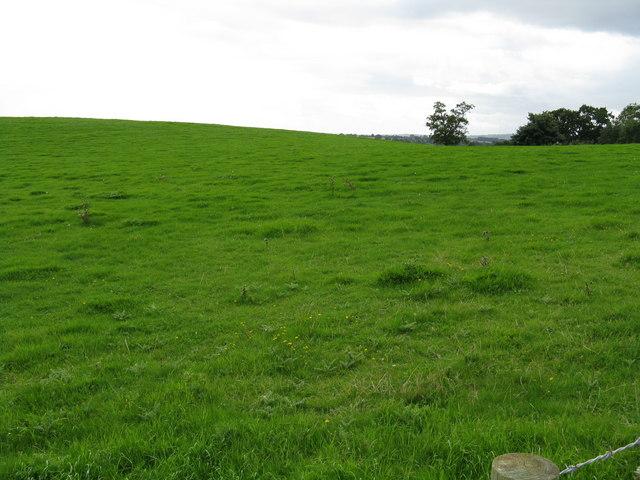 Hillside opposite Catley turning