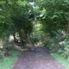 Leafy track, Cefnpennar