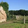 Ayton Parish Church cemetery