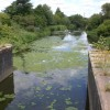 River Soar downstream of Soar Lane bridge
