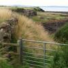 Coast path near Boarhills