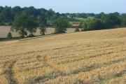 Farmland, Mortimer