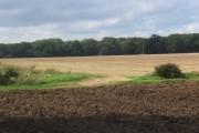 Panoramic view across fields towards Cutler's Grove