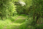 Upper Kites Wood.