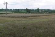 Farmland north of Hinckley