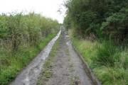 Pretty Track