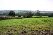 Metley Moor
