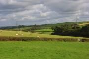 Pastures, Lovacott