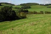 Farmland at Wellington Heath