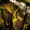Gate and stream, Old Country Farm