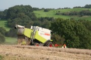 Cullompton: end of the harvest