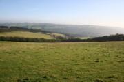 Farmland near East Anstey Common