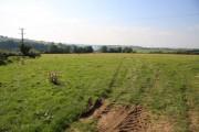 Farmland above Aller