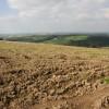 View across Mole Valley