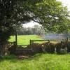 Festooned fence