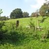 Hillside pasture between Carey and Hoarwithy