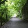 Colinton Dell path