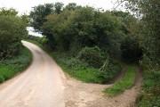 Lane south of Hartland