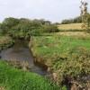 River Torridge