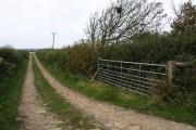 Field access track, Gorrans Down