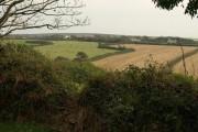 Fields near Edistone