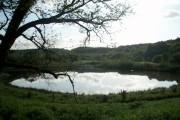 Afon llan lake in Penllergaer woods
