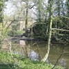 Pond at Hales House